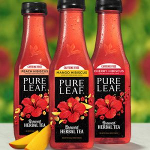 pepsico pure lead herbal iced tea